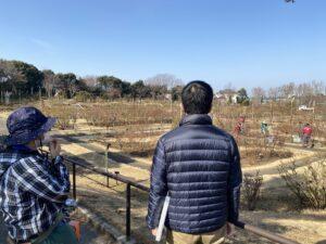 京成バラ園を眺める山本さん