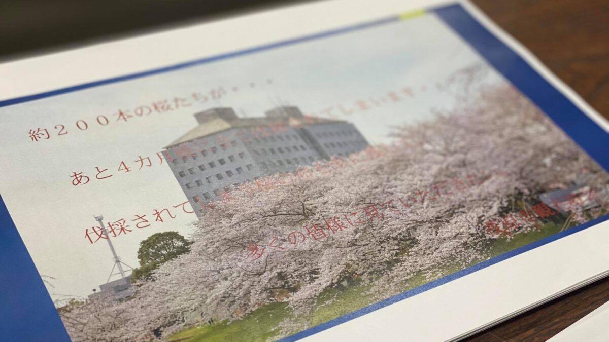 茂原市の歴史を彩ってきた約200本の桜の魅力を記憶に残すプロジェクトが動き出します!