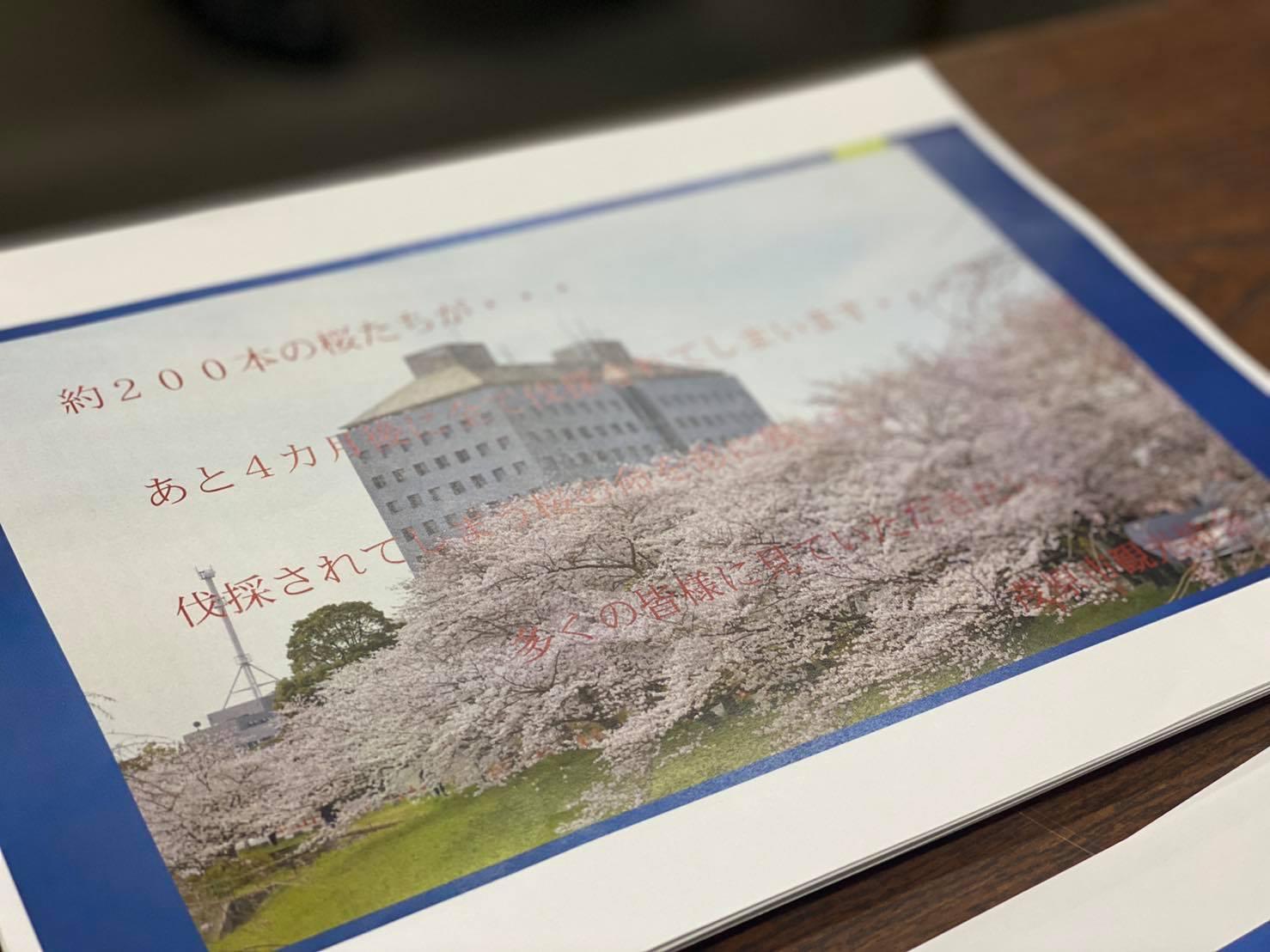 茂原桜プロジェクト表紙